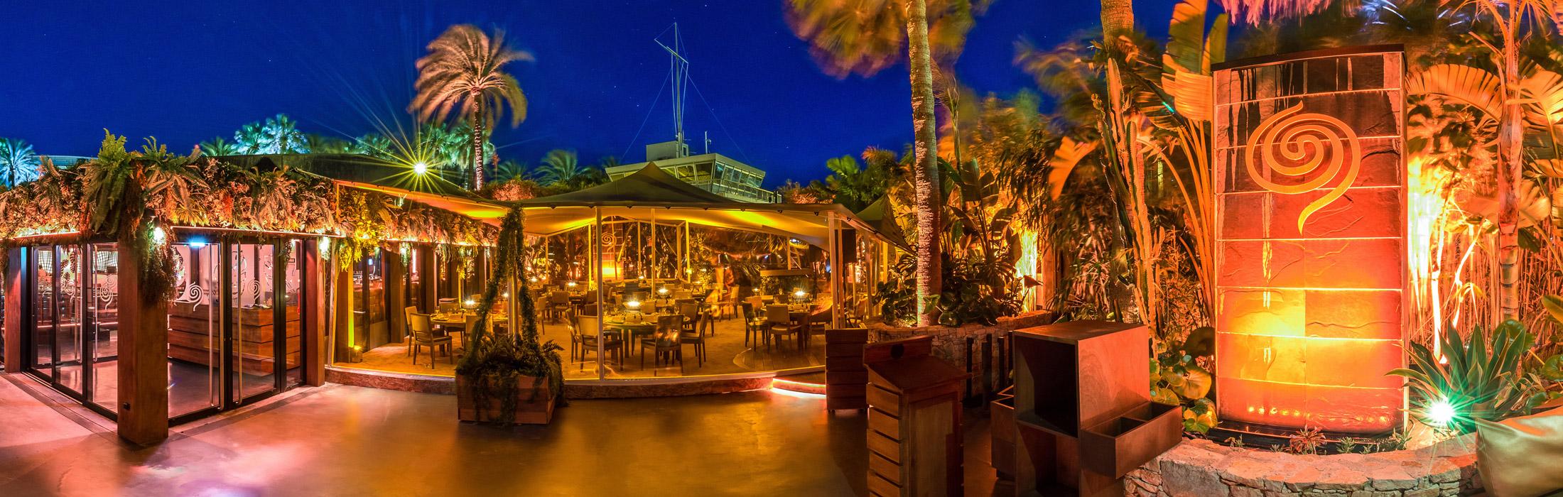 extérieur du bâoli avec une ambiance tropicale sous les palmiers et une lumière orange