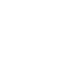 logo palmier blanc