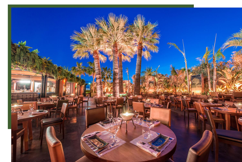 terrasse extérieure du restaurant bâoli sous les palmiers dans la nuit