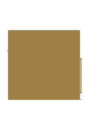 logo palmier doré avec coucher de soleil au bâoli cannes