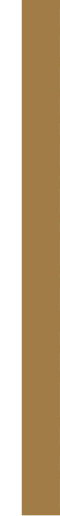 programmation au bâoli cannes dorée