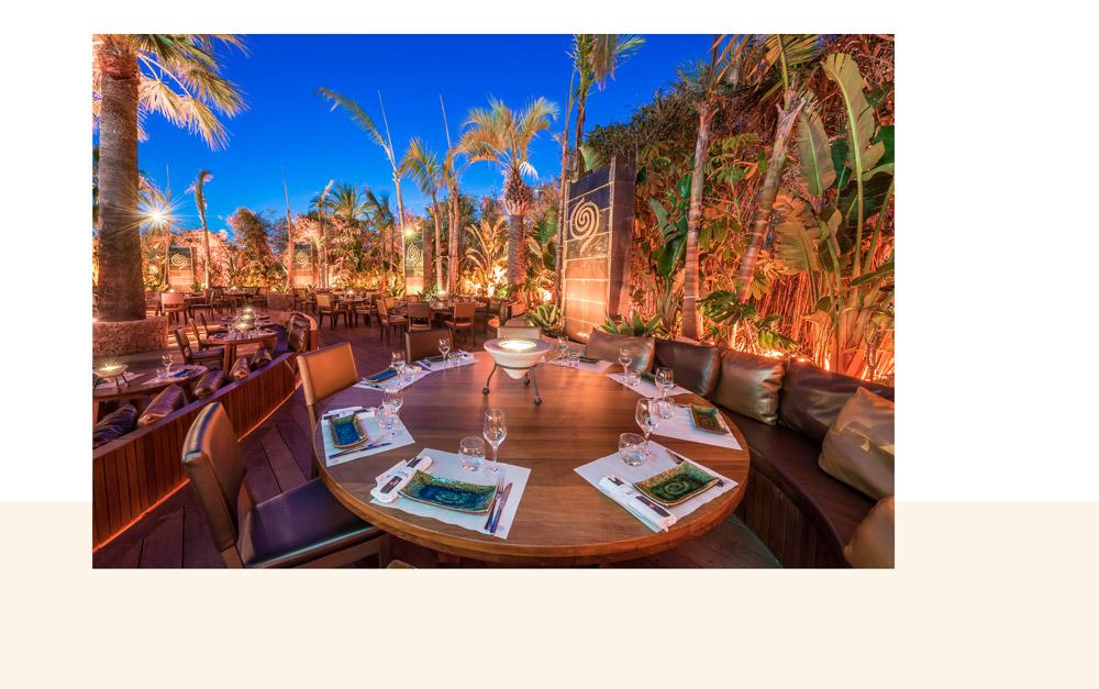 terrasse extérieure du restaurant bâoli cannes avec une décoration jungle